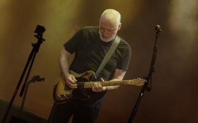 {David Gilmour}